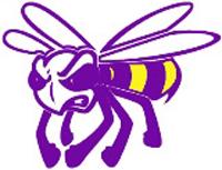 Hermitage hornets logo